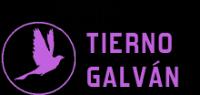 CD Valladolid Tierno Galván
