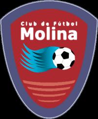 Club de Fútbol Molina Grúas La Variante