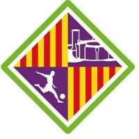 Associació Esportiva Palma Futsal