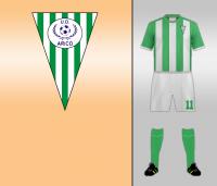 Unión Deportiva Arico