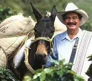 JuanValdez